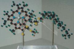Molecola Clorofilla
