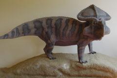Protoceratopo