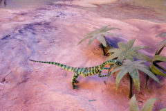 Ambiente Triassico