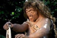 Neanderthal donna