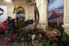 Dinosaurs – Land of the Giants