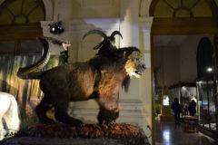 MYTHOS – Fantastic Creatures